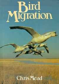 Image of BIRD MIGRATION