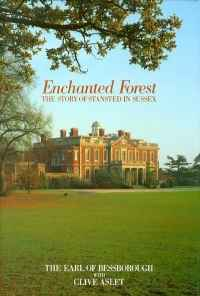 Image of ENCHANTED FOREST