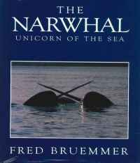 Image of THE NARWHAL