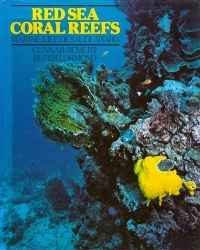 Image of RED SEA CORAL REEFS