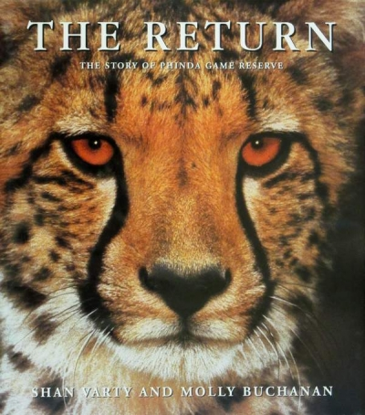 Main Image for THE RETURN