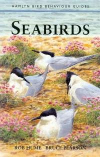 Image of SEABIRDS