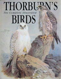 View THE COMPLETE ILLUSTRATED THORBURN'S BIRDS details